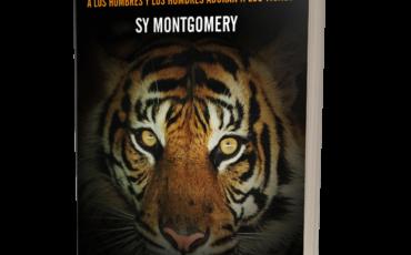 El embrujo del tigre. UN VIAJE AL LUGAR DONDE LOS TIGRES SE COMEN A LOS HOMBRES Y LOS HOMBRES ADORAN A LOS TIGRES