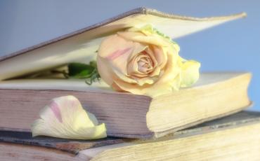 Las ventajas de un buen libro
