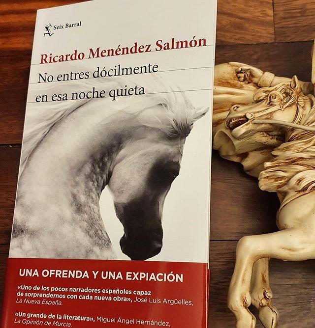 """""""No entres dócilmente en esa noche quieta"""" Ricardo Menéndez Salmón"""