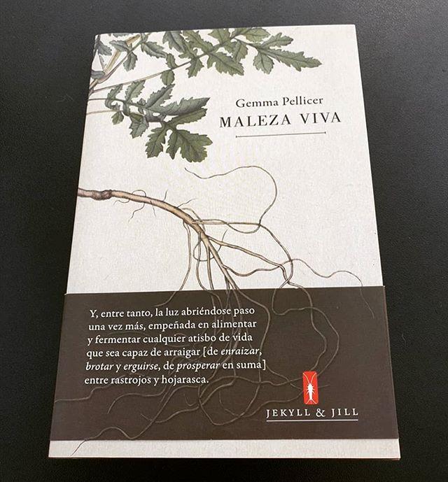 «Con Maleza viva Pellicer confirma su rica y personal trayectoria creativa»
