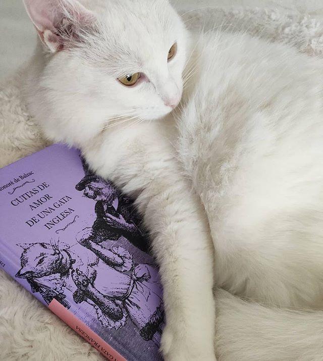 Balzac decide unirse a un reto editorial en el que los animales se retratan a ellos mismos