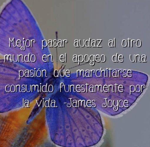 Cita de James Joyce