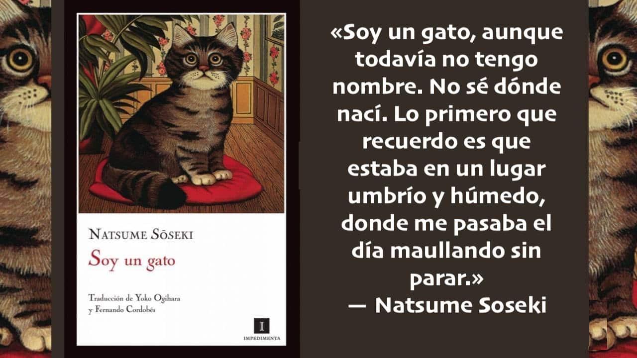 Cita de Natsume Soseki en su 153º aniversario, el «gato» cumple años