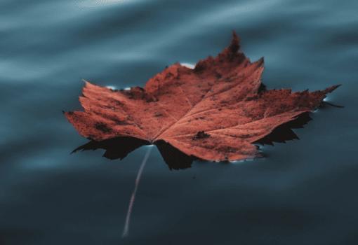9 libros de noviembre que no deberías perderte