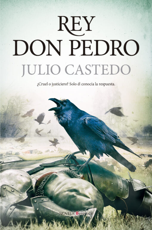 Rey don Pedro, de Julio Castedo.