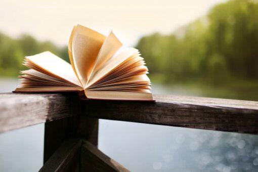 Y los 10 libros más vendidos en la Feria del Libro de Madrid están siendo...