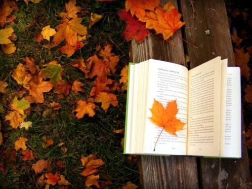 Octubre en 10 libros imperdibles, Murakami incluido
